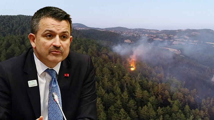 """Orman Bakanı Pakdemirli """"Kontrol altına aldık"""""""
